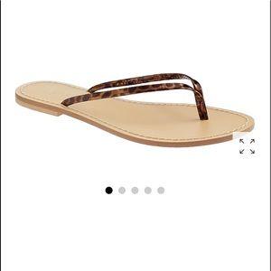 J. Crew Tortoise Capri sandals